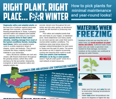 Protect your pipes from freezing this winter - Winterization tips to combat freezing temperatures thumbnail